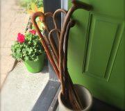 assorted walking sticks